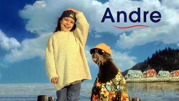 Netflix box art for Andre