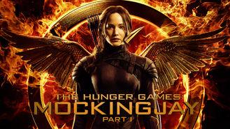 Netflix Box Art for Hunger Games: Mockingjay - Part 1, The