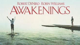 Netflix box art for Awakenings