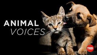 Netflix box art for TEDTalks: Animal Voices - Season 1