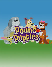 Pound Puppies: Season 1: Toyoshiko! Bark Friend Machine