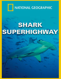 National Geographic: Shark Superhighway