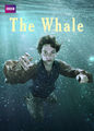 The Whale | filmes-netflix.blogspot.com