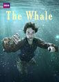 The Whale   filmes-netflix.blogspot.com