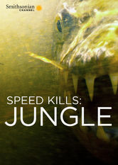 Speed Kills: Jungle