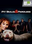 Pit Bulls & Parolees: Season 3 Poster