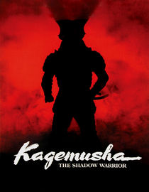 Box art for Kagemusha