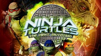 Netflix box art for Ninja Turtles: The Next Mutation - Season 1