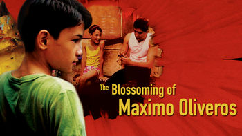 Netflix box art for The Blossoming of Maximo Oliveros
