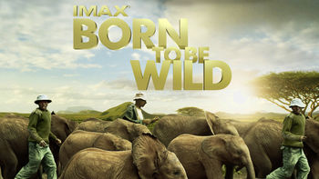 Born to Be Wild: IMAX | filmes-netflix.blogspot.com