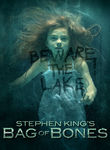 Stephen King's Bag of Bones Poster