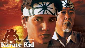 Netflix box art for The Karate Kid