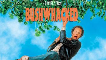 Netflix box art for Bushwhacked
