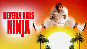 Netflix box art for Beverly Hills Ninja