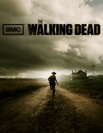 The Walking Dead: Season 1: TS-19