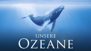 Is Oceans on Netflix?