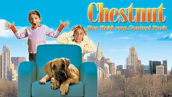 Chestnut: Der Held vom Central Park