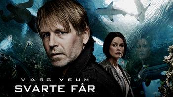 Netflix box art for Varg Veum - Svarte får