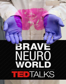 TEDTalks: Brave Neuro World: V.S. Ramachandran on Your Mind