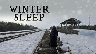 Netflix Box Art for Winter Sleep