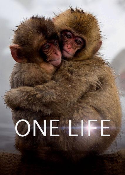 One Life Netflix BR (Brazil)