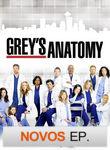 Grey's Anatomy | filmes-netflix.blogspot.com.br