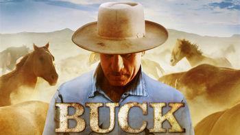 Netflix box art for Buck