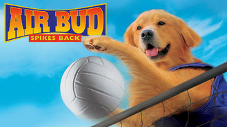 Netflix box art for Air Bud: Spikes Back