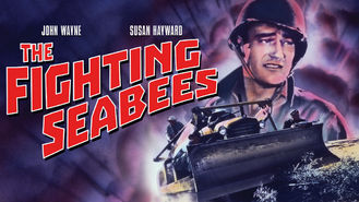 Netflix box art for The Fighting Seabees