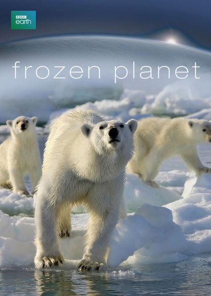 Frozen Planet Netflix AR (Argentina)
