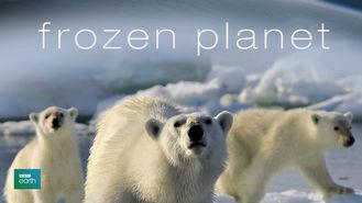 Netflix Box Art for Frozen Planet - Season 1