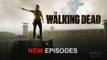 Netflix Box Art for Walking Dead - Season 4, The