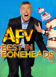 America's Funniest Home Videos: Best in Boneheads Poster