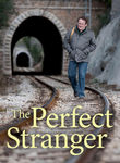 The Perfect Stranger Poster