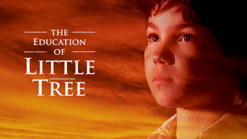 Netflix box art for The Education of Little Tree