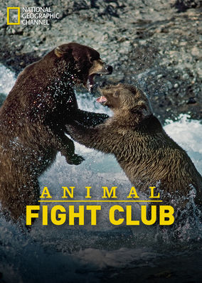 Animal Fight Club - Season 1