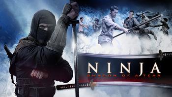 Netflix box art for Ninja 2: Shadow of a Tear