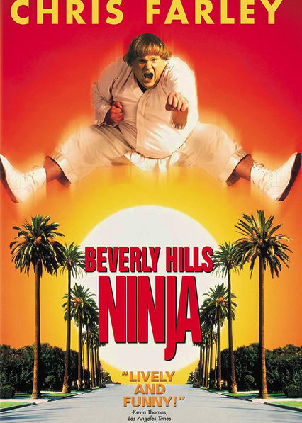 Beverly Hills Ninja Netflix ES (España)