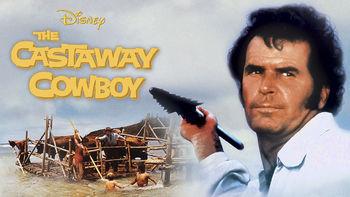 Netflix box art for The Castaway Cowboy