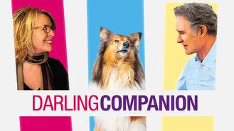 Netflix box art for Darling Companion