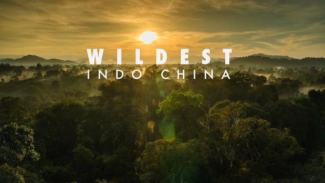 Netflix Box Art for Wildest Indochina - Season 1
