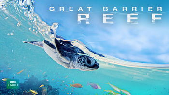 Netflix box art for Great Barrier Reef - Season 1