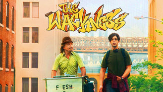 Netflix box art for The Wackness