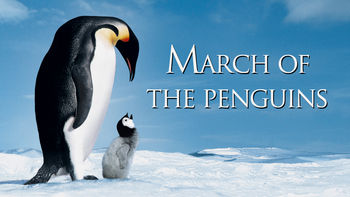 Netflix box art for March of the Penguins