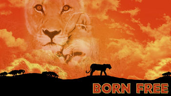 Netflix box art for Born Free