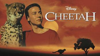 Netflix box art for Cheetah
