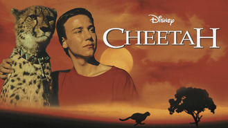 Netflix box art for Cheetah