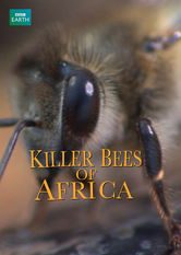 Killer Bees of Africa