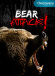 Bear Attack! Poster