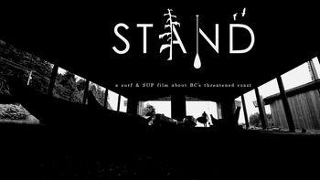 Netflix box art for Stand